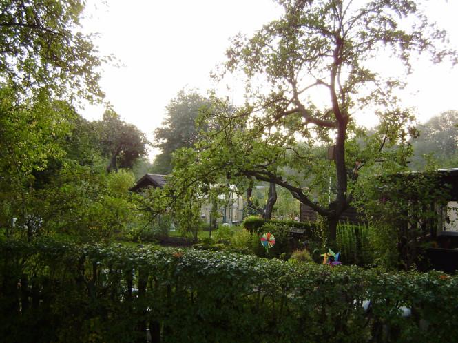 Kleingarten in Kiel