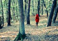 Rotkäppchen im Wald, von hinten fotografiert