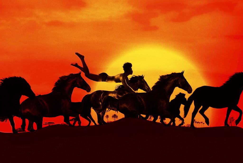 Eine Herde wilder Pferde als Schattenumrisse zu sehen vor der untergehenden Sonne.